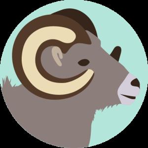 Aries - Horóscopo de aries de hoy